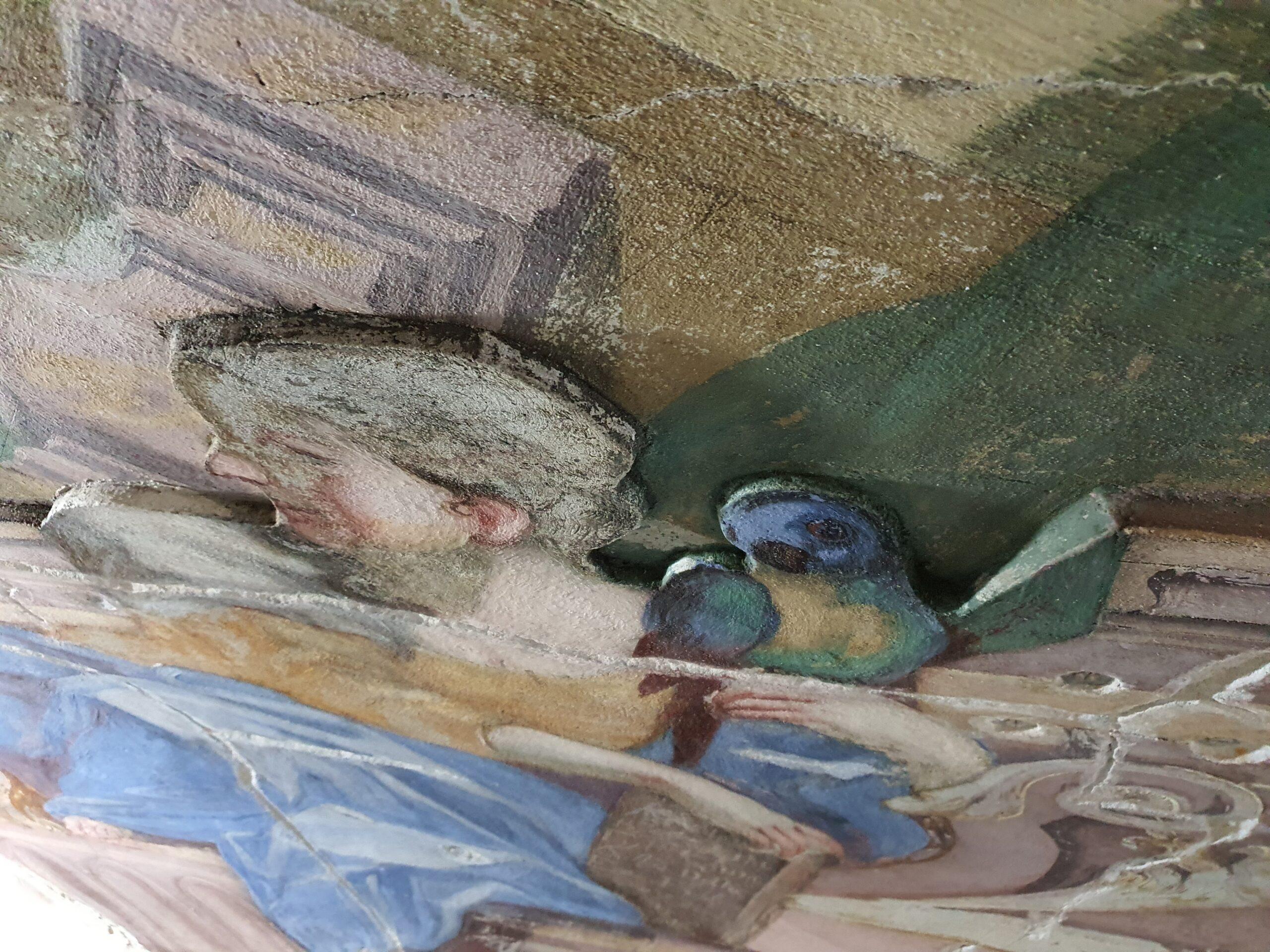Papuga z Auli